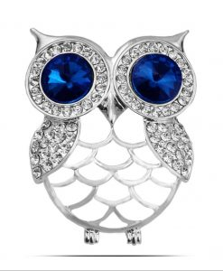 Diamante Blue Eyed Owl Pin Brooch